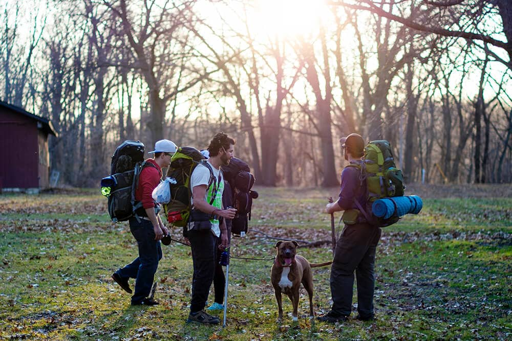 A group of backpackers set off early morning hike with dog