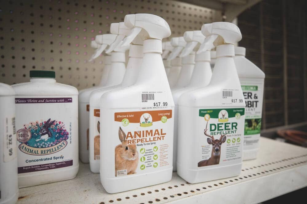 Animal-repellent-spray-for-plants