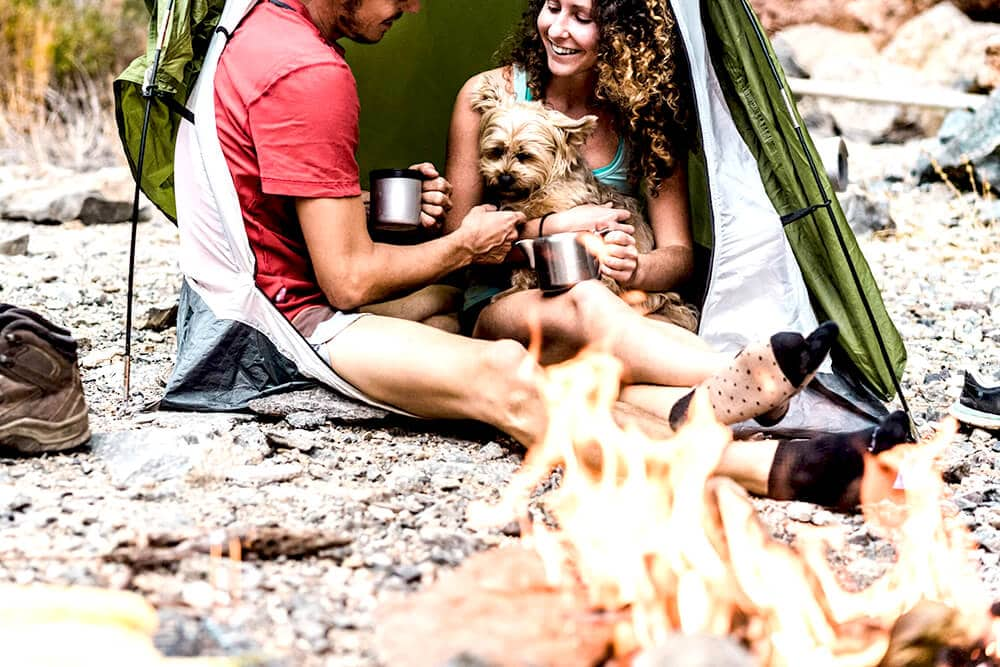 Camping and campfire coffee marshmallows and puppy