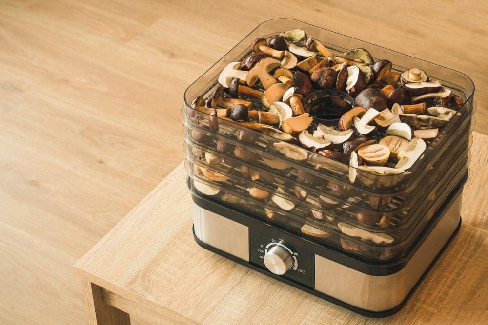 Food dehyrdator for storing mushrooms