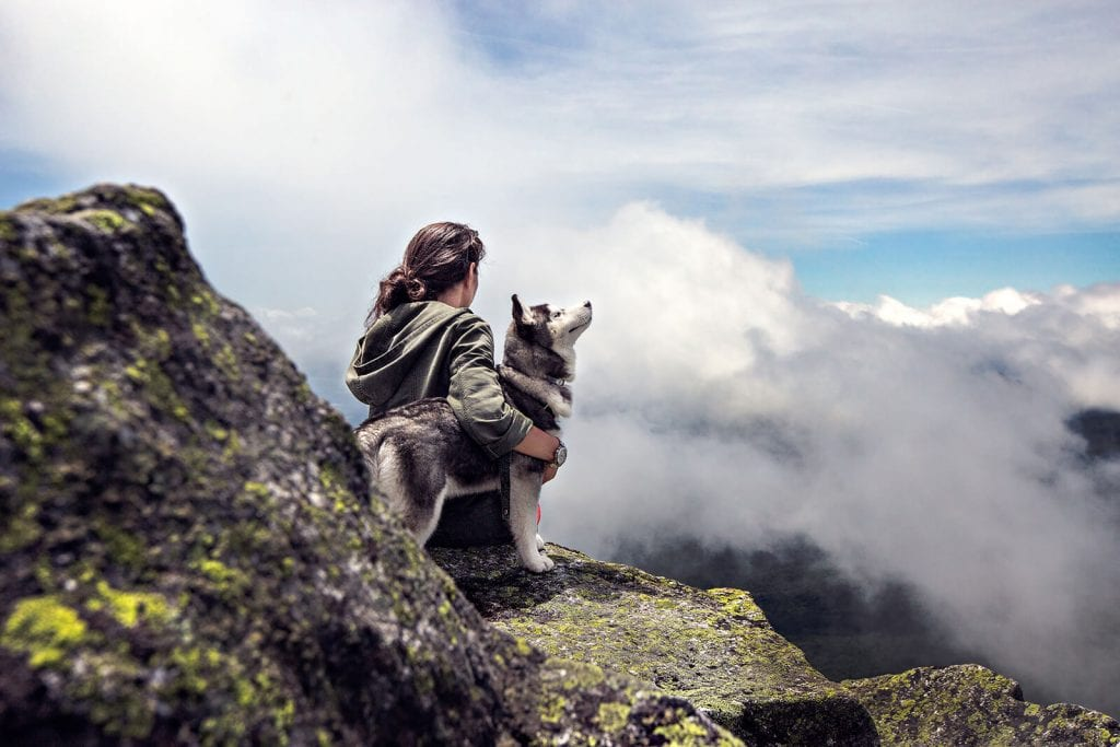 Female hiker and husky dog taking a rest on lookout during hike