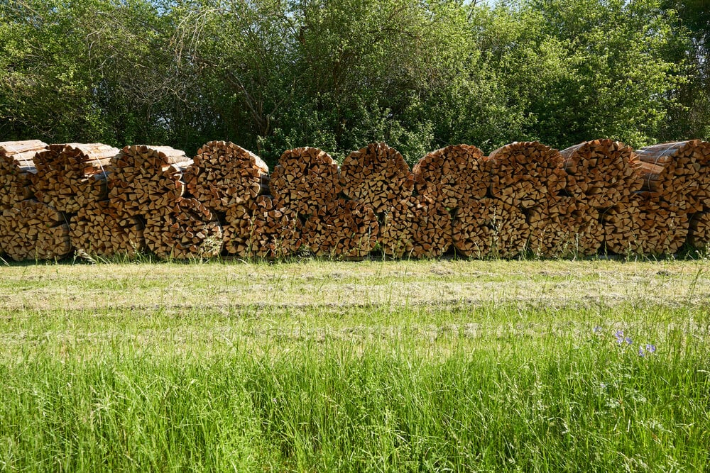 Firewood bundles ready for retail sale at a seller