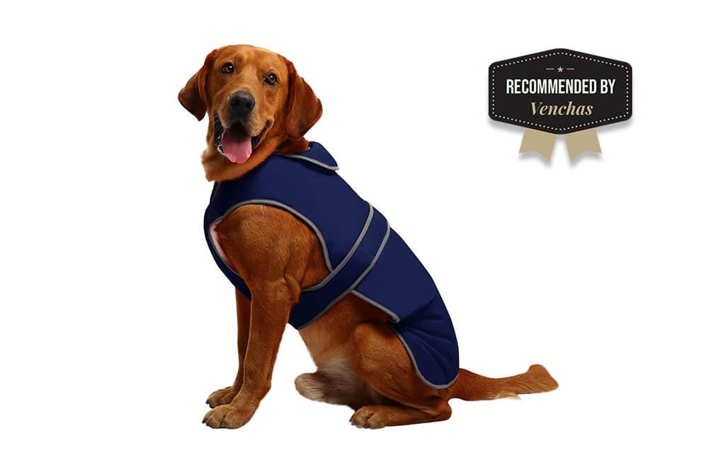 MIGOHI Reflective Waterproof Windproof Dog Coat Reversible Stormguard Winter Dog Vest