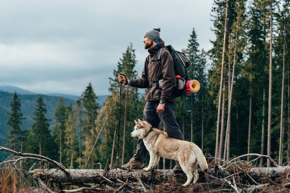 Male hiker in rough backcountry hiking with sock liners and dog