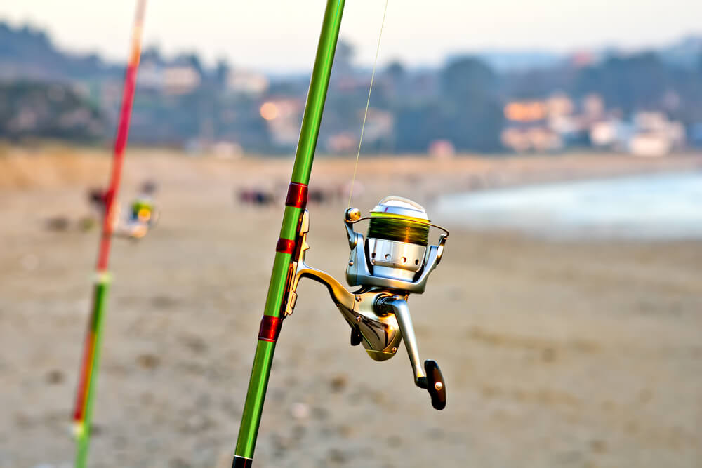 New-saltwater-reels-set-up-on-sand-beach-afternoon-fishing