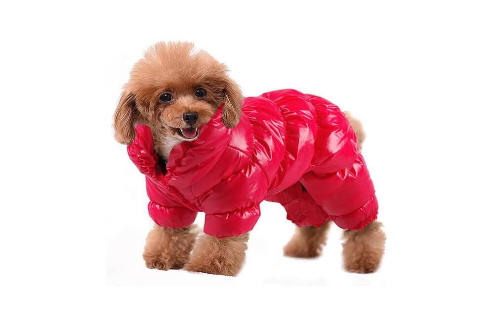 PET ARTIST Dog Winter Coat Hoodie Snowsuit Apparel with Leash Hole